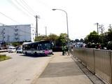 20090510_ふなばし三番瀬海浜公園_潮干狩り_1024_DSC06187