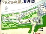 20090523_船橋市夏見6_運動公園_ホタルの里_1250_DSC08754