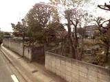 20080406_船橋市法典_東武ストア_建設予定地_010