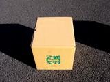 20090102_IKEA船橋_初売り_福袋_福箱_0947_DSC07946