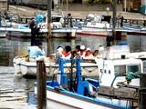 20090405_船橋市湊町_船橋海洋少年団ヨット部_1046_DSC00576