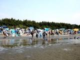20090510_ふなばし三番瀬海浜公園_潮干狩り_1036_DSC06238