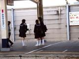 20090305_千葉県公立高一般選抜_合格発表_0847_DSC05029