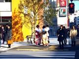 20090112_船橋市市民文化ホール_成人式_0938_DSC09594