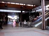 20090112_船橋市市民文化ホール_成人式_0952_DSC09649