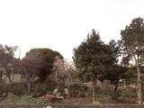 20080406_船橋市法典_東武ストア_建設予定地_020.jp
