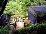 20090523_船橋市夏見6_運動公園_ホタルの里_1249_DSC08743