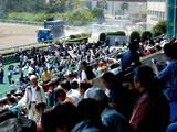 20070503-船橋市若松1・船橋競馬場・路上魂-1244-DSC03015