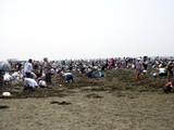 20090510_ふなばし三番瀬海浜公園_潮干狩り_1042_DSC06263
