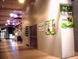20090522_ららぽーとTOKYO-BAY_とんこつらぁ麺 チャブトン_DSC08298