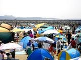 20090510_ふなばし三番瀬海浜公園_潮干狩り_1032_DSC06230
