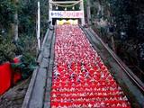 20060305-勝浦市・かつうらビッグひな祭り・遠見岬神社-DSC00199