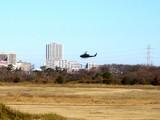 20090111_船橋市習志野3_第1空挺団降下訓練始め_1025_DSC08784