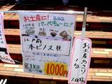 20090510_ふなばし三番瀬海浜公園_潮干狩り_1028_DSC06206