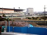 20081223_船橋市若松1_船橋競馬場_桜_0904_DSC05316