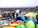 20090510_ふなばし三番瀬海浜公園_潮干狩り_1032_DSC06231