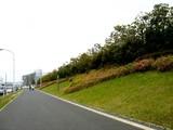 20090504_習志野市花園1_パナソニックさくら公園_1051_DSC05275