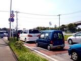20090510_ふなばし三番瀬海浜公園_潮干狩り_1022_DSC06181