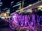 20091214_クリスマス_イルミネーション_Xmas_1933_DSC01639