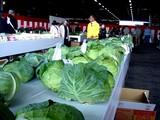20091108_船橋市農水産祭_船橋中央卸売場_1019_DSC05952