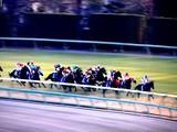 20091227_JRA中山競馬_第54回有馬記念_G1_1537_DSC03642