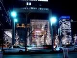 20091221_クリスマス_イルミネーション_Xmas_2148_DSC02509