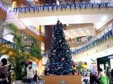 20091128_クリスマス_イルミネーション_Xmas_1839_DSC09864