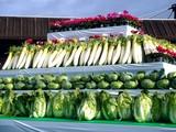 20091108_船橋市農水産祭_船橋中央卸売場_0931_DSC05805
