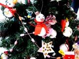 20091223_クリスマス_イルミネーション_Xmas_1101_DSC02857