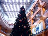 20091112_クリスマス_イルミネーション_Xmas_1342_DSC06921