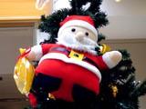 20091206_クリスマス_イルミネーション_Xmas_1140_DSC04612