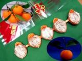 20091226_つるし柿_干し柿_渋柿_130
