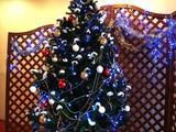 20091114_クリスマス_イルミネーション_Xmas_1516_DSC07080