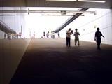 20090802_船橋市古作1_中山競馬場_花火大会_1603_DSC09117