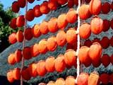 20091226_つるし柿_干し柿_渋柿_120