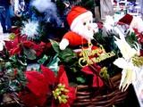 20091122_クリスマス_グッズ_Xmas_1724_DSC08823