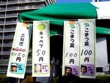 20091107_船橋市農水産祭_都市農業PR_1220_DSC05602
