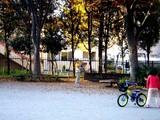 20091128_船橋ファミリータウン公園_紅葉_1420_DSC09266