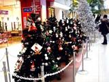 20091223_クリスマス_イルミネーション_Xmas_1101_DSC02852