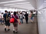 20080803-船橋市古作・中山競馬場・花火大会-1955-DSC04295