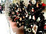 20091223_クリスマス_イルミネーション_Xmas_1101_DSC02855