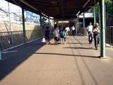 20080803-船橋市古作・中山競馬場・花火大会-1550-DSC03984