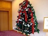 20091114_クリスマス_イルミネーション_Xmas_1258_DSC07068
