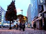 20091128_クリスマス_イルミネーション_Xmas_1628_DSC09657