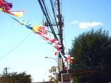 20091011_習志野市秋津_秋津祭り_本祭り_1311_DSC01426