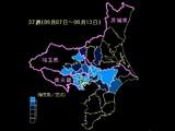 20090924_千葉県_インフルエンザ_千葉県と近郊地域状況_37週