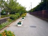 20080809-船橋市若松3・若松小学校前-1701-DSC05014