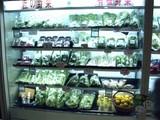 20090906_都営地下鉄新宿線本八幡駅_(株)モーム_020