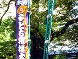 20091018_船橋市宮本5_船橋大神宮奉納相撲大会_子供_1016_DSC02485