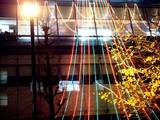 20091222_東京千代田区丸の内_イルミネーション_2313_DSC02738